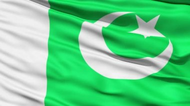 Waving Flag Of Pakistan — Stock Video