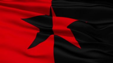 Red and Black Star Flag — Stock Video