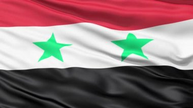 Waving Flag Of Syria — Stock Video
