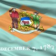 Waving Flag Of The US State Of Delaware — Stock Video