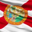 Waving Flag Of The US State of Florida - Stock Photo