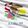 Stock Video: Waving Flag Of US State of Illinois
