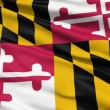 viftande flagga den amerikanska delstaten maryland — Stockvideo
