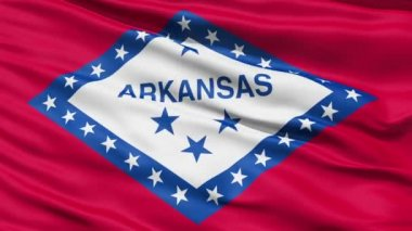 Waving Flag Of The US State Of Arkansas — Stock Video