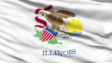 Waving Flag Of The US State of Illinois — Stock Video