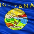 Stock Video: Waving Flag Of US State of Montana