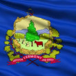 Stock Video: Waving Flag Of State Of Vermont
