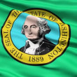 Stock Video: Waving Flag Of State Of Washington