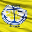 Stock Video: AmericState City Flag of Anchorage Alaska