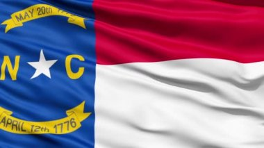 Waving Flag Of US State of North Carolina — Stock Video