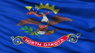 Waving Flag Of The US State of North Dakota — Stock Video