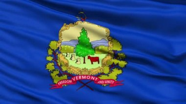 Waving Flag Of The State Of Vermont — Stock Video
