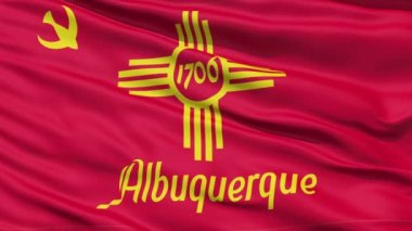 American State City Flag of Albuquerque — Stock Video