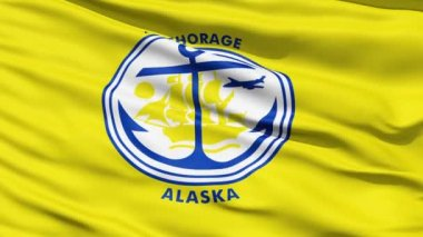 American State City Flag of Anchorage Alaska — Stock Video