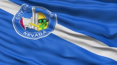 American State Capital City Flag of Nevada Kansas — Stock Video