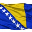 Waving national flag of Bosnia and Herzegovina — Stock Video