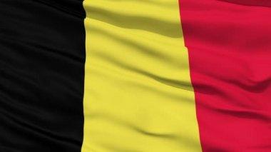 Waving national flag of Belgium — Stock Video