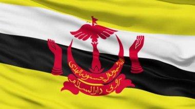 Waving national flag of Brunei — Stock Video