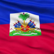 Waving national flag of Haiti — Stock Video