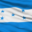Waving national flag of Honduras — Stock Video