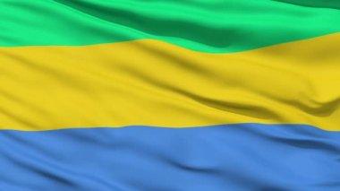 Ondeando la bandera nacional de gabón — Vídeo de stock