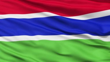 Waving national flag of Gambia — ストックビデオ