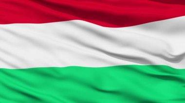 Waving national flag of Hungary — Stock Video