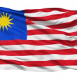 Waving national flag of Malaysia — Stock Video