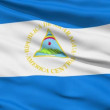 Waving national flag of Nicaragua — Stock Video