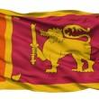 Waving national flag of Sri Lanka — Stock Video