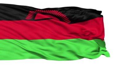 Waving national flag of Malawi — Stock Video