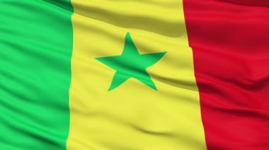 Waving national flag of Senegal — Stock Video