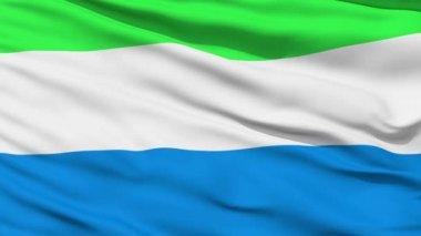 Waving national flag of Sierra Leone — Stock Video