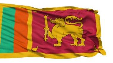 Waving national flag of Sri Lanka — Stock Video