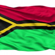 Waving national flag of Vanuatu — Stock Video