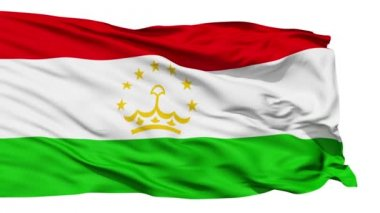 Waving national flag of Tajikistan — Stock Video