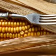 Corn and fork close-up. — Stock Photo