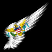 United States Virgin Islands flag on black background — Stock Photo