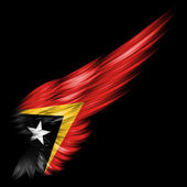 East Timor flag on Abstract wing with black background — Stock Photo