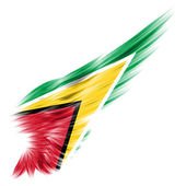 Guyana flag on Abstract wing with white background — Stock Photo
