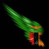 Flag of Zambia on Abstract wing with black background — Stock Photo