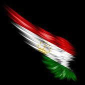 Tajikistan Flag on Abstract wing with black background — Stock Photo