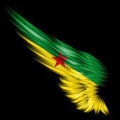 Flag of French Guiana on Abstract wing with black background — Stock Photo