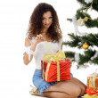Cute young woman decorate christmas tree — Stock Photo #1127683