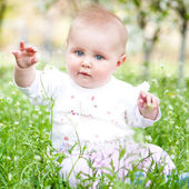 Cute baby on the meadow — Stockfoto