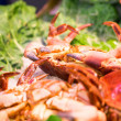 Wonderful great crabs — Stock Photo