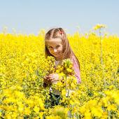 Niña linda en un campo — Foto de Stock