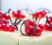 Delicious cheesecake — Zdjęcie stockowe