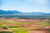 Picturesque fields — Stockfoto