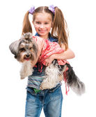 Girl with Yorkshire Terrier dog — Stock Photo
